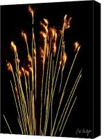 4th July Digital Art Canvas Prints - Goldenrod Canvas Print by Phill  Doherty
