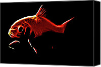 Sealife Digital Art Canvas Prints - Goldfish 1 Canvas Print by Tilly Williams