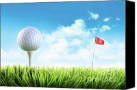 Golfing Canvas Prints - Golf ball with tee in the grass  Canvas Print by Sandra Cunningham
