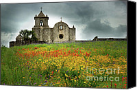 Texas Bluebonnets Canvas Prints - Goliad in Spring Canvas Print by Jon Holiday