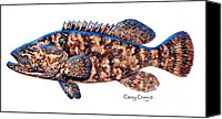 Gag Grouper Canvas Prints - Goliath Grouper Canvas Print by Carey Chen