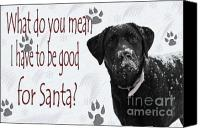 Puppy Canvas Prints - Good For Santa Canvas Print by Cathy  Beharriell