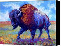 Bulls Canvas Prints - Good Medicine Canvas Print by Marion Rose
