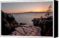 Acadia Canvas Prints - Goodnight Ravens Nest Canvas Print by Chad Tracy