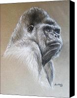 Forest Pastels Canvas Prints - Gorilla Canvas Print by Anastasis  Anastasi