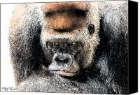 Gorilla Mixed Media Canvas Prints - Gorilla Canvas Print by Rick Thiemke
