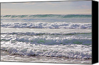 San Clemente Canvas Prints - Got milk Canvas Print by Viktor Savchenko