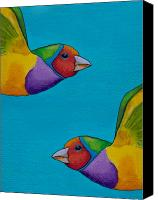 Finch Canvas Prints - Gouldian Finches Canvas Print by Robert Lacy