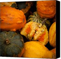Matt Dobson Canvas Prints - Gourds  Canvas Print by Matt Dobson