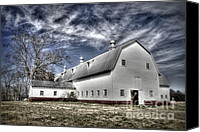 White Barns Canvas Prints - Governor Scott Dairy Farm Canvas Print by Benanne Stiens