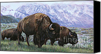 Bison Pastels Canvas Prints - Grand Teton Bison Canvas Print by Deb LaFogg-Docherty