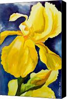 Yellow Flower Canvas Prints - Grandmas Yellow Iris Canvas Print by Janis Grau