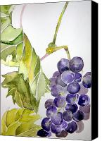 Dessert Drawings Canvas Prints - Grape Vine Canvas Print by Mindy Newman