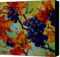 Vineyard Canvas Prints - Grapes Mini Canvas Print by Marion Rose