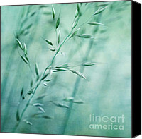 Grasses Canvas Prints - Grassland Canvas Print by Priska Wettstein