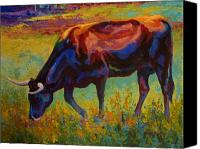 Cow Canvas Prints - Grazing Texas Longhorn Canvas Print by Marion Rose