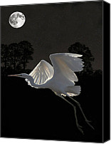 Hera Mixed Media Canvas Prints - Great Egret In Flight Canvas Print by Eric Kempson