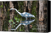 Great Egret Canvas Prints - Great Egret Canvas Print by Louise Heusinkveld