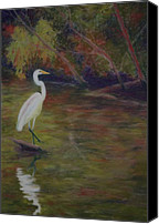 Great Pastels Canvas Prints - Great Egret Canvas Print by Marion Derrett