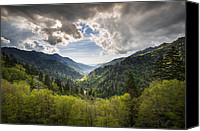 Gatlinburg Canvas Prints - Great Smoky Mountains Landscape Photography - Spring at Mortons Overlook Canvas Print by Dave Allen