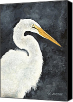 John Brown Canvas Prints - Great White Egret Canvas Print by John Brown