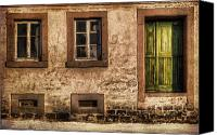 Door Canvas Prints - Green Door Canvas Print by Ryan Wyckoff
