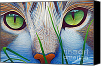 Animal Painting Canvas Prints - Green Eyes Canvas Print by Brian  Commerford