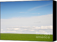 Souvenir Canvas Prints - Green Field Canvas Print by Pixel Chimp