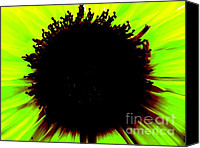 Blackhole Canvas Prints - Green Glowing Star Canvas Print by Jason Christopher