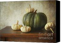 Melon Canvas Prints - Green pumpkin and gourds on table  Canvas Print by Sandra Cunningham