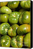 Fruit Markets Canvas Prints - Green Tomatoes Canvas Print by Frank Tschakert