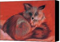 Fox Pastels Canvas Prints - Grey Fox Canvas Print by Karen Cruz