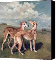 Dogs Canvas Prints - Greyhounds Canvas Print by John Emms