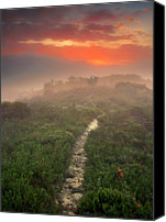 Lush Foliage Canvas Prints - Grose Valley At Sunset Canvas Print by Capturing the beauty around us, one chapter at a time...