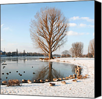Flock Of Birds Canvas Prints - Group Of Geese Huddled Together Canvas Print by Richard Fairless