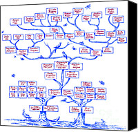 Ancestor Canvas Prints - Guggenheim Family Tree Canvas Print by Science Source