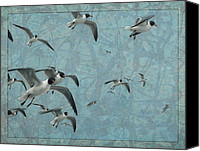 Waterfowl Canvas Prints - Gulls Canvas Print by James W Johnson