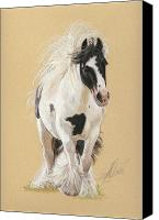Equestrian Pastels Canvas Prints - Gypsy Horse Mare Canvas Print by Terry Kirkland Cook