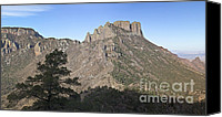 Casa Grande. Canvas Prints - Habitat Transition Canvas Print by Greg Dimijian