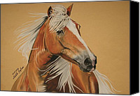 Wild Horse Pastels Canvas Prints - Haflinger  Canvas Print by Melita Safran