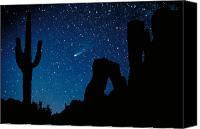 Starry Photo Canvas Prints - Halleys Comet Canvas Print by Frank Zullo