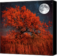 "\""painterly Photography\\\"" Photo Canvas Prints - Halloween Color Canvas Print by Philippe Sainte-Laudy Photography"