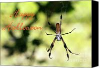 Creepy Canvas Prints - Halloween Spider Card Canvas Print by Sabrina L Ryan