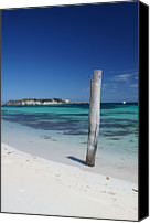 Wooden Post Canvas Prints - Hamelin Bay Revisited Canvas Print by Chris Ring Images