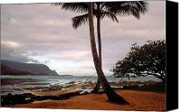 Beach Special Promotions - Hanalei Bay Hammock at Dawn Canvas Print by Kathy Yates