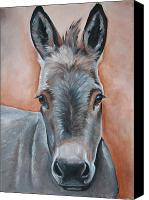 Donkey Painting Canvas Prints - Handsome Hank Canvas Print by Laura Carey