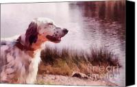 Black And White Pyrography Canvas Prints - Handsome Hunter. English Setter Canvas Print by Jenny Rainbow