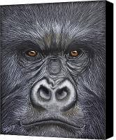 Gorilla Painting Canvas Prints - Happy Face Canvas Print by Laurie Bath