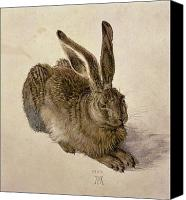 Watercolour Canvas Prints - Hare Canvas Print by Albrecht Durer