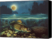 Lake Canvas Prints - Harvest Moon Walleye III Canvas Print by JQ Licensing